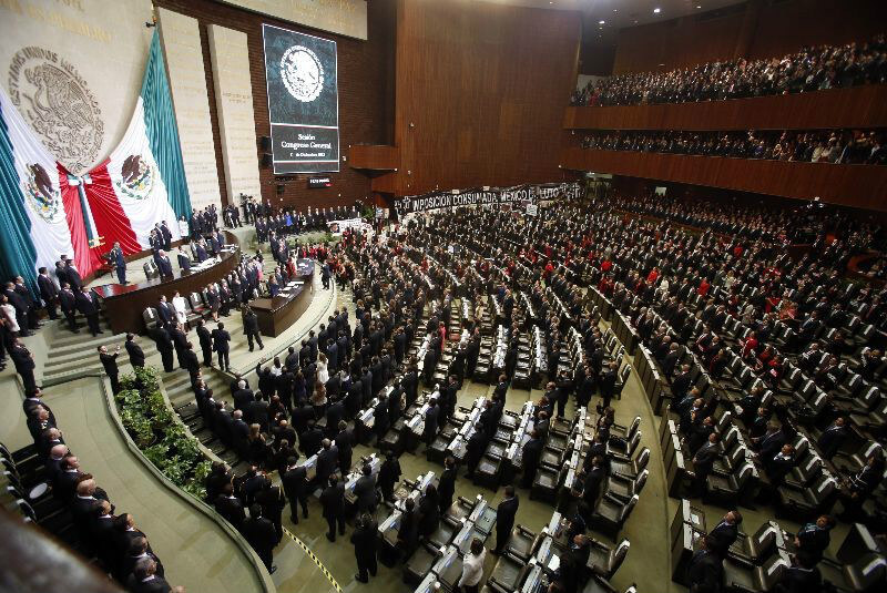 Legislatura aprueba ley sobre delfinarios en México