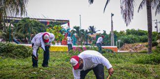 """En el municipio de Isla Mujeres, se intensifica el programa """"verde y saludable"""" donde funcionarios y voluntarios trabajaron juntos"""