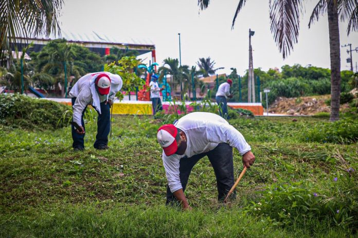 En el municipio de Isla Mujeres, se intensifica el programa