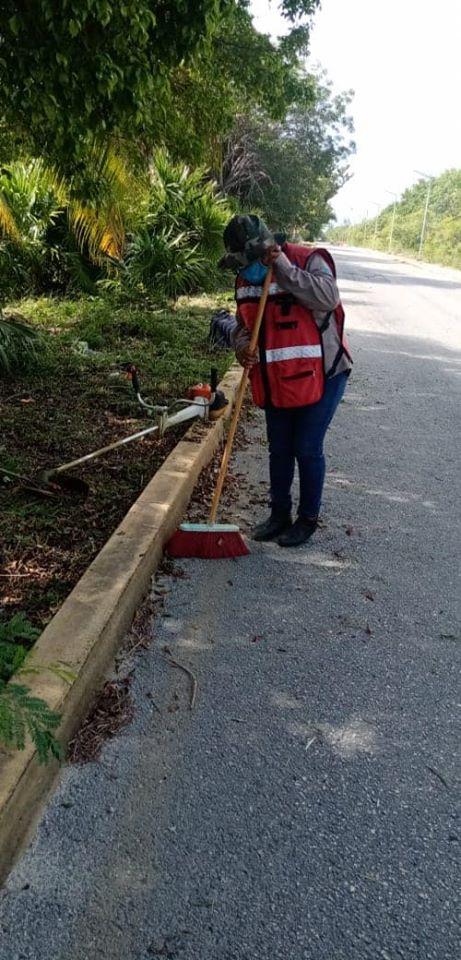 el Ayuntamiento de Isla Mujeres dirigido por Juan Carrillo Soberanis, intensificó los trabajos de limpieza de camellones y laterales en zona continental